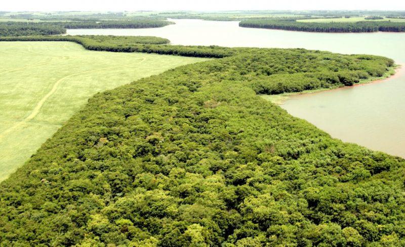 Faixa-de-proteção -reservatório.-itaipu-sistema-ambiental-foz