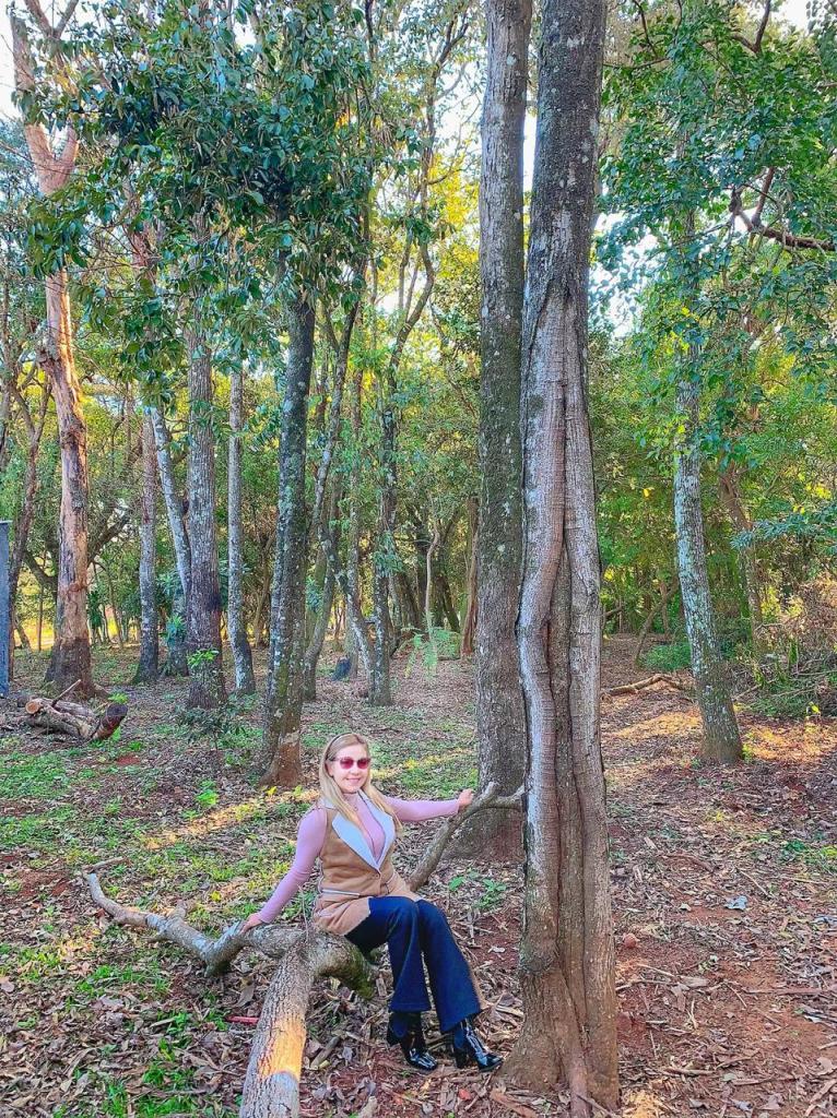 Bosque da Av. Xavier Koelb