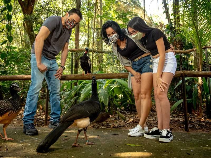familia-turistando-parque-das-aves