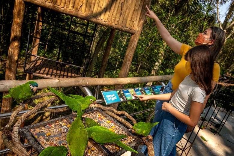 pais-filhos-visitando-parque-das-aves
