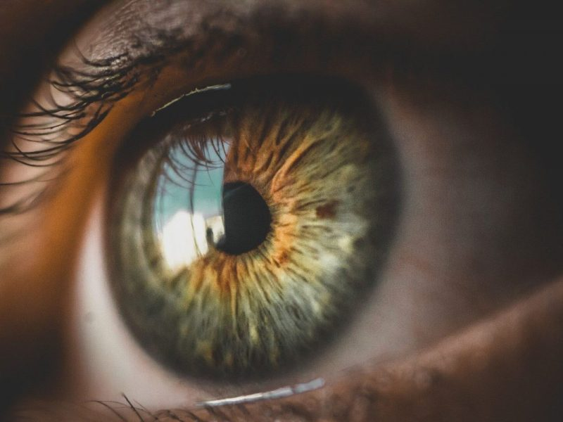 olhos em foco