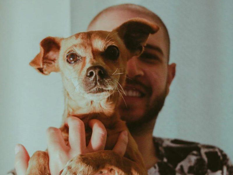 Vitor Vilani - Pet&Med