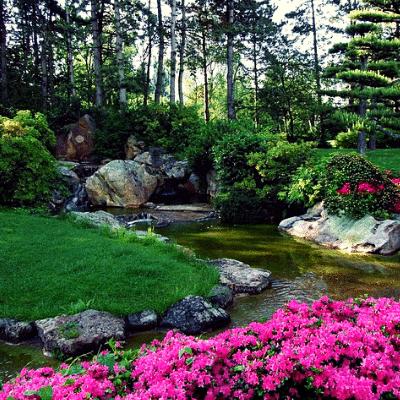 Progettazione Giardini Roma scegli i giardini ornamentali