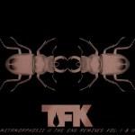 THOUSAND FOOT KRUTCH RELEASES FIRST REMIX CD, METAMORPHOSIZ II THE END REMIXES VOL. 1 & 2, NOV. 19