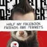 BOOK REVIEW: Half My Facebook Friends Are Ferrets by J.A. Buckle