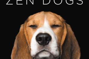 BOOK REVIEW: ZEN DOGS by Alex Cearns