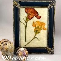 Картина из гербария