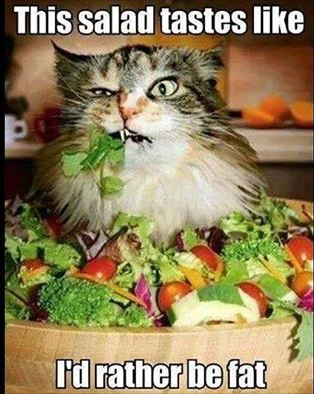 "Too funny:  ""This salad tastes like... I'd rather be fat"""