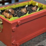 Refinished/repurposed crate to hold Christmas paperwhites