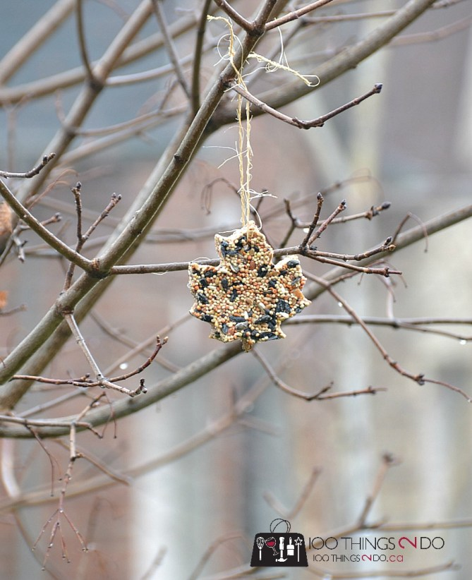 Bird feeder ornaments - crafts with kids