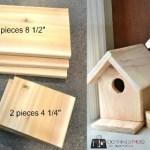 $3 DIY Birdhouse
