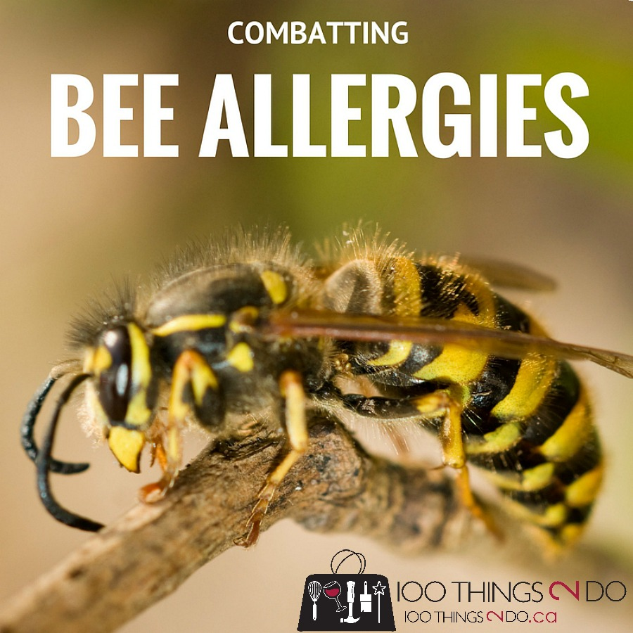 Bee allergies, venom immunotherapy, anaphylactic allergy, bee stings, venom shots, VIT, yellowjacket, bee stings