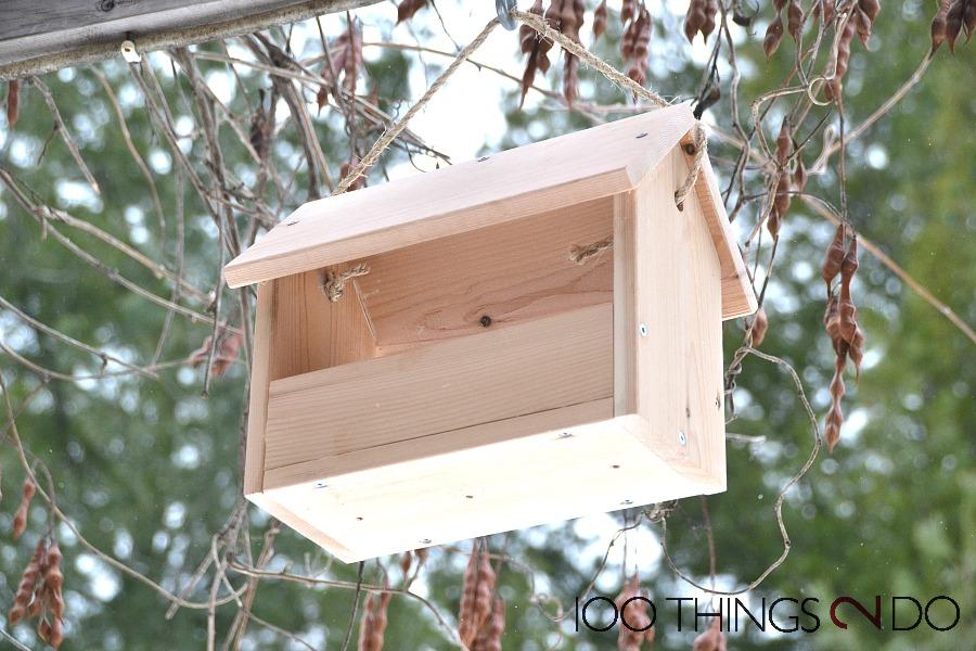 Easy To Build Bird Feeder Plans