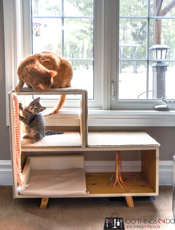 DIY cat tree, DIY cat playground, DIY cat scratching post, kitten playground, kitten tree