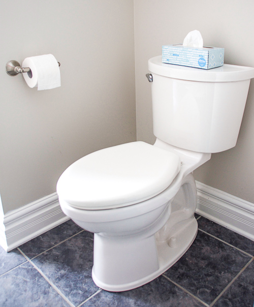 Choosing the best toilet for your family, how to choose a toilet, toilet considerations, installing a toilet
