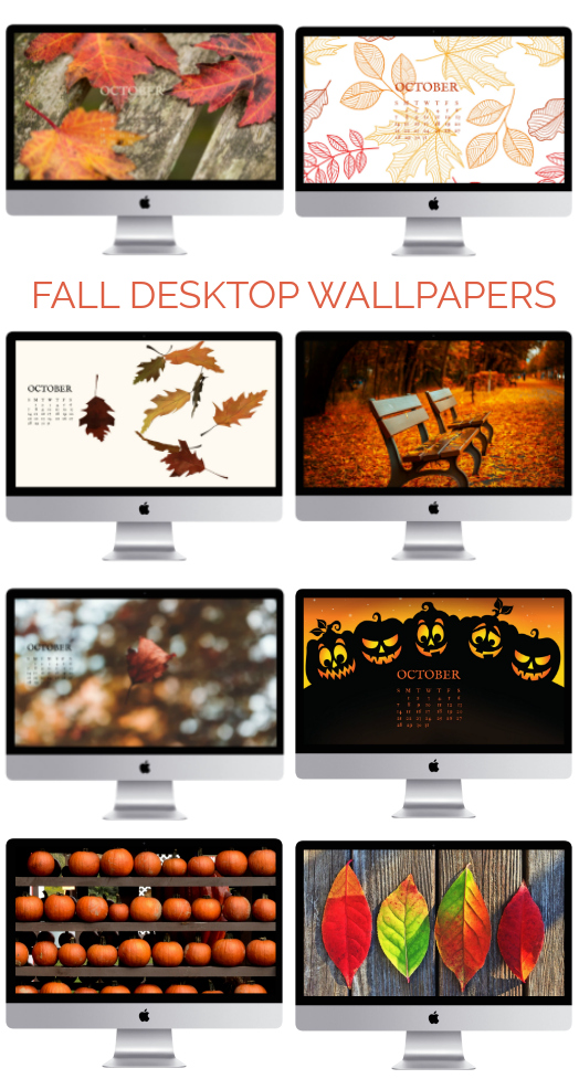 Free Fall Desktop Wallpapers Fall Screensavers 100 Things 2 Do