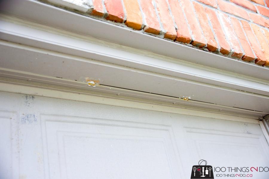bumble bee nest in garage door frame