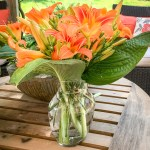 simple summer bouquet, summer arrangement, summer flowers, daylillies and hostas
