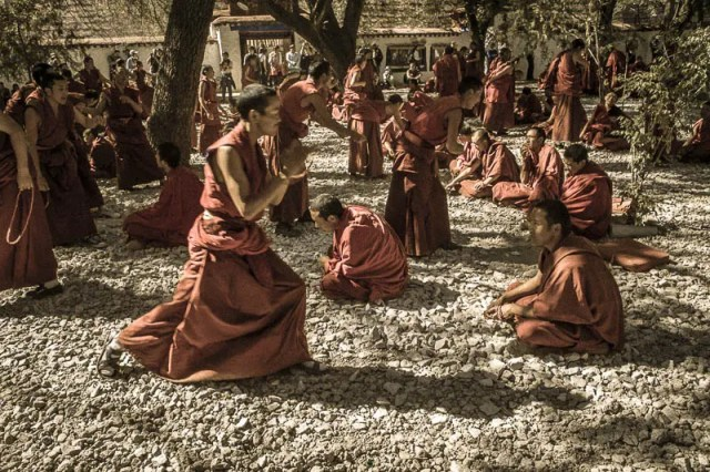 Sera Monastery monks debate