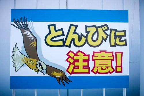I can attack you - Japanese funny sign