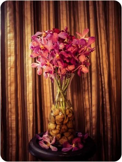 Divana Spa flowers