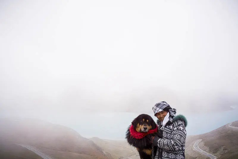 Tibetan Mastiff dog and his owner
