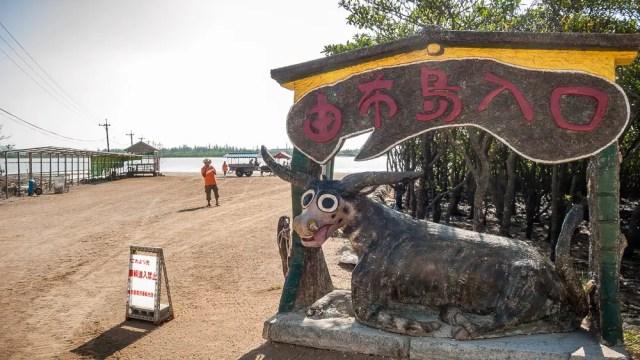 Iriomote Jima water buffalo cart station