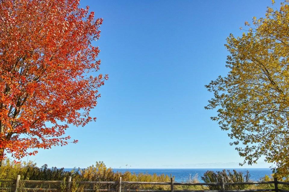 The Magic of Fall in Canada