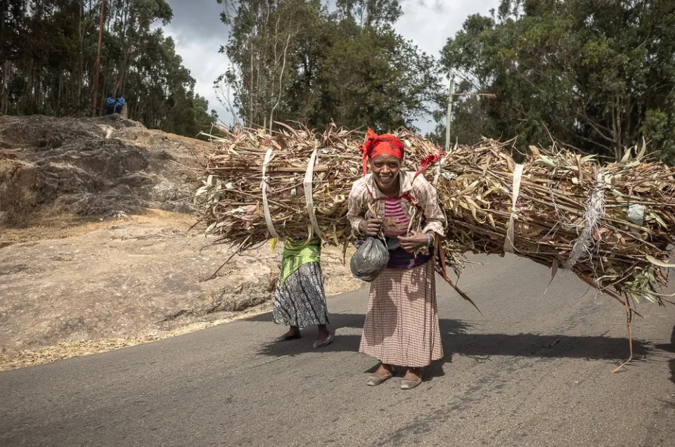 Woman carrying brushwood