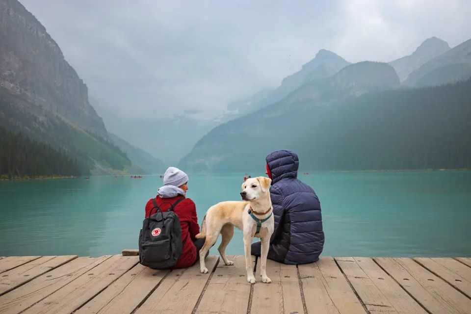 Tourists enjoying the Lake Louise views