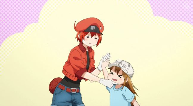Cells at Work Episode 7 Red and Platelet