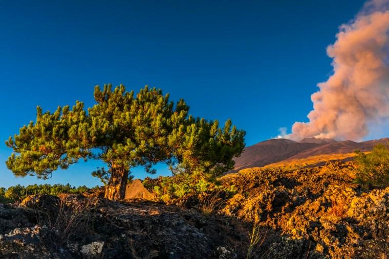 Eruzione dai crateri sommitali