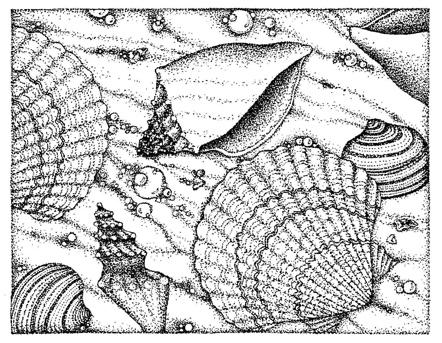 Wonderful Beach Coloring Pages