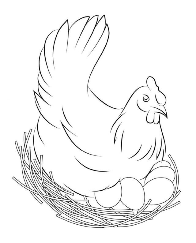 Chicken Coloring Pages to Print for Kids and Adults  28 Coloring