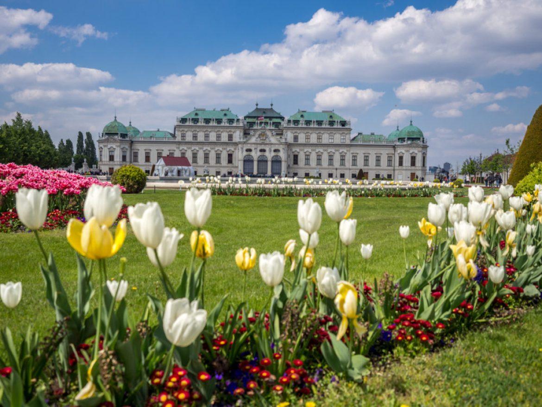 Austria Wiedeń