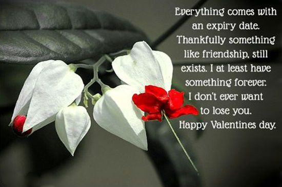 35 best happy valentines day quotes for friends
