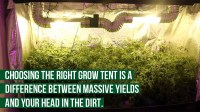 Best Inline Fans For Cannabis Grow Rooms: (2018) Top 10 ...