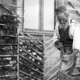 A_Hasidic_farmer_in_Bnei_Brak._1926_(id.15567746)