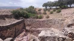 Tel Hazor040517 (57)