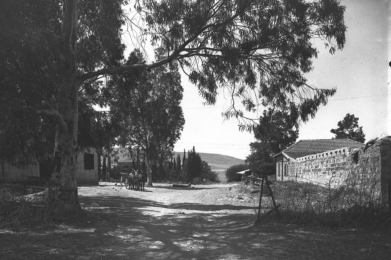 THE_MAIN_STREET_AT_MENAHAMIA_VILLAGE_IN_THE_NORTHERN_JORDAN_VALLEY._כפר_מנחמיה_בבקעת_הירדן.D29-029