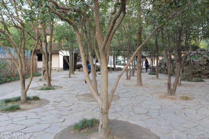 suzhou-95