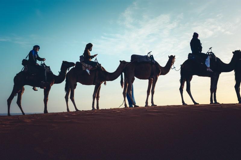 Яхнали камилите на път за Ерг Чеби, Сахара, Мароко