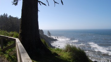 #88 – Patrick's Point State Park