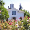 Stroll through Luther Burbank Home & Garden