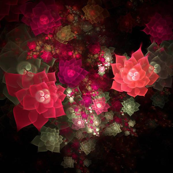 3d Abstract - Red And Pink Fractal Roses Ipad Iphone Hd