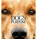 Nonton A Dog's Purpose 2017 Indonesia Subtitle