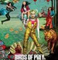 Streaming Birds of Prey And the Fantabulous Emancipation of One Harley Quinn Sub Indo
