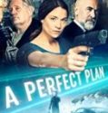 Streaming Film A Perfect Plan 2020 Subtitle Indonesia