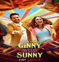 Nonton Movie Ginny Weds Sunny 2020 Subtitle Indonesia
