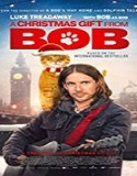 Nonton Movie A Christmas Gift from Bob 2020 Subtitle Indonesia